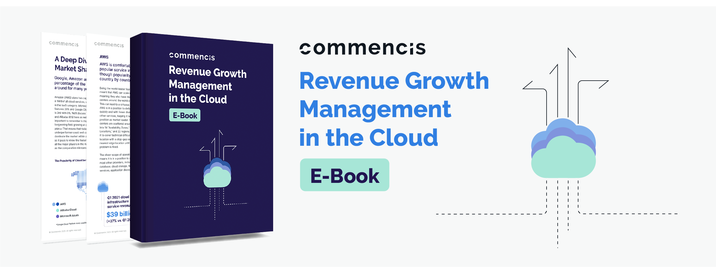 Revenue Growth Management in the Cloud
